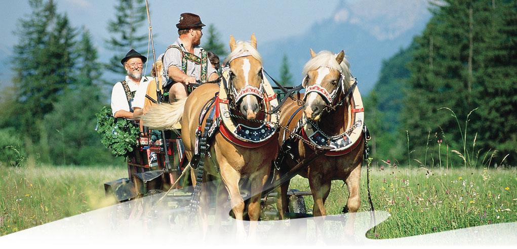Pferdekutschfahrt-bei-Oberammergau